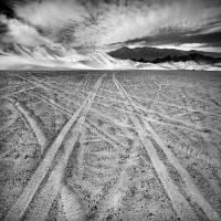 """BW-008 - """"Desert Race"""""""