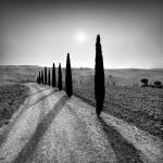 """BW-004 - """"Tuscan Sundial"""""""