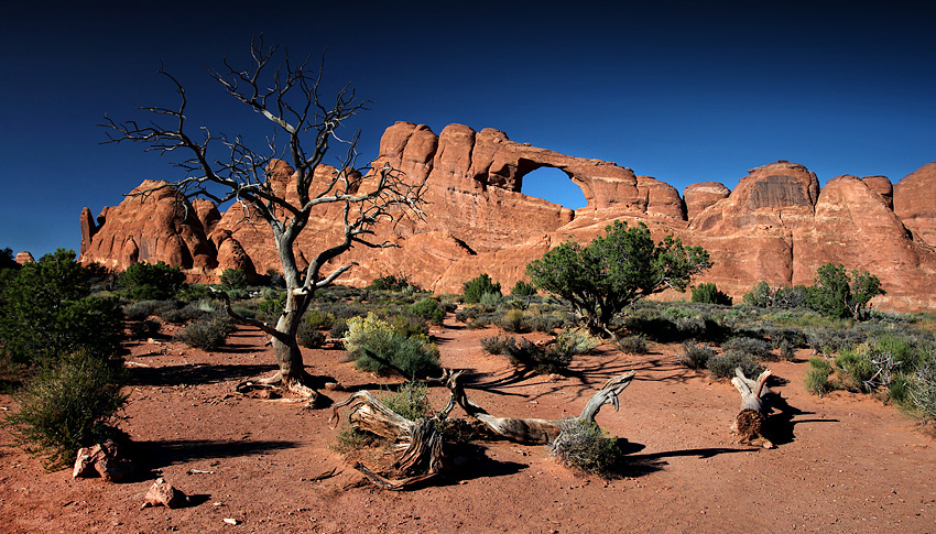 Arches, USA