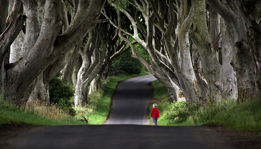 Red Riding Hood, Northern Ireland