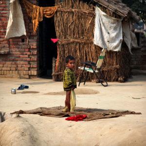 India 31 - Flying Carpet