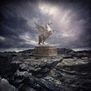 "PM17 - ""Pegasus"""