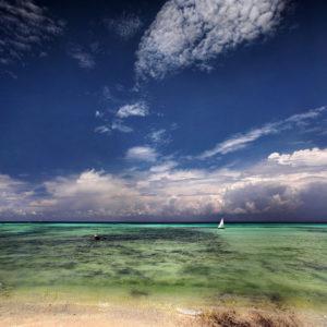 Zanzibar05
