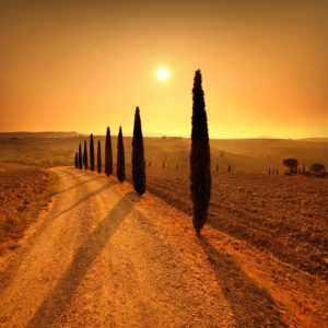 Italy01 - Tuscany 01