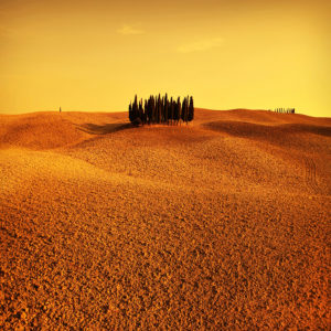 Italy03 - Tuscany 03