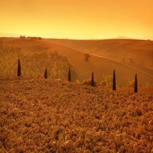 Italy07 - Tuscany 07