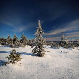 """""""The Kingdom of Snow"""" - Vol.12 - Karkonosze Mountains, Poland"""