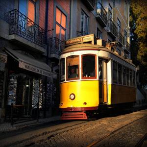 "Portugal02 - ""Facing The Sun"""