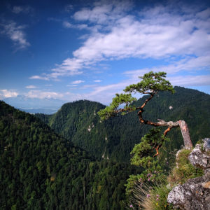 """Living on the Edge"" - Sokolica, Pieniny, Poland"