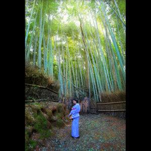 """Lost in Arashiyama"" - Kyoto, Japan"