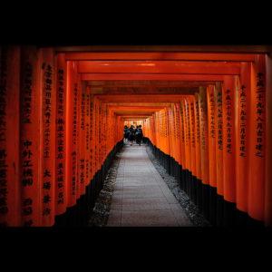 """""""Education"""" - Fushimi Inari-taisha, Kyoto, Japan"""