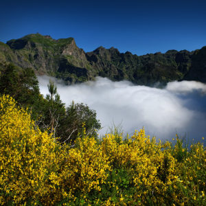 "Madeira, Curral das Freiras - ""Through the Clouds and Flowers"""