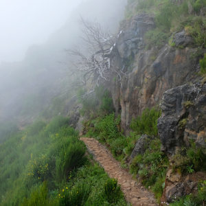 "Madeira, Pico do Arieiro - ""The Secret Path"""