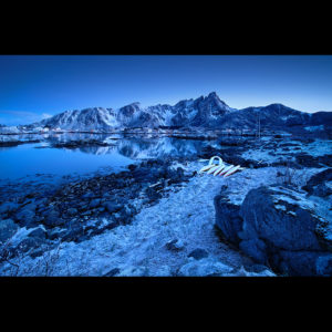 "Lofoten 24 - ""Frozen Vol.4"""