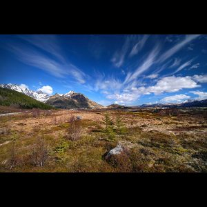 "Lofoten 36 - ""Under the Blue Sky - Vol.7"""